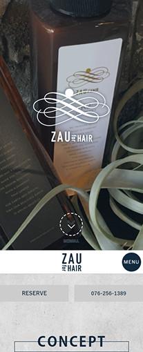ZAU for HAIRPC画像1