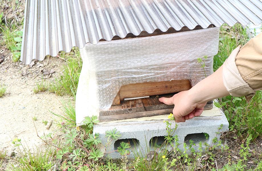 ときつ養蜂園